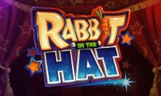 Rabbit in the Hat